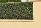 Acacia Hills Decorative fencing 30